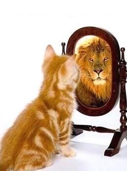 Как хората се самозаблуждават, изграждайки надценена представа на себе си